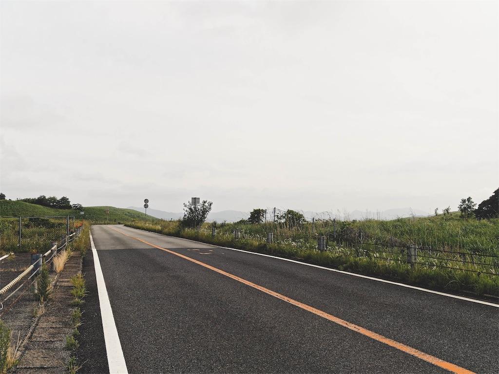 f:id:yuuki89:20190615131655j:image