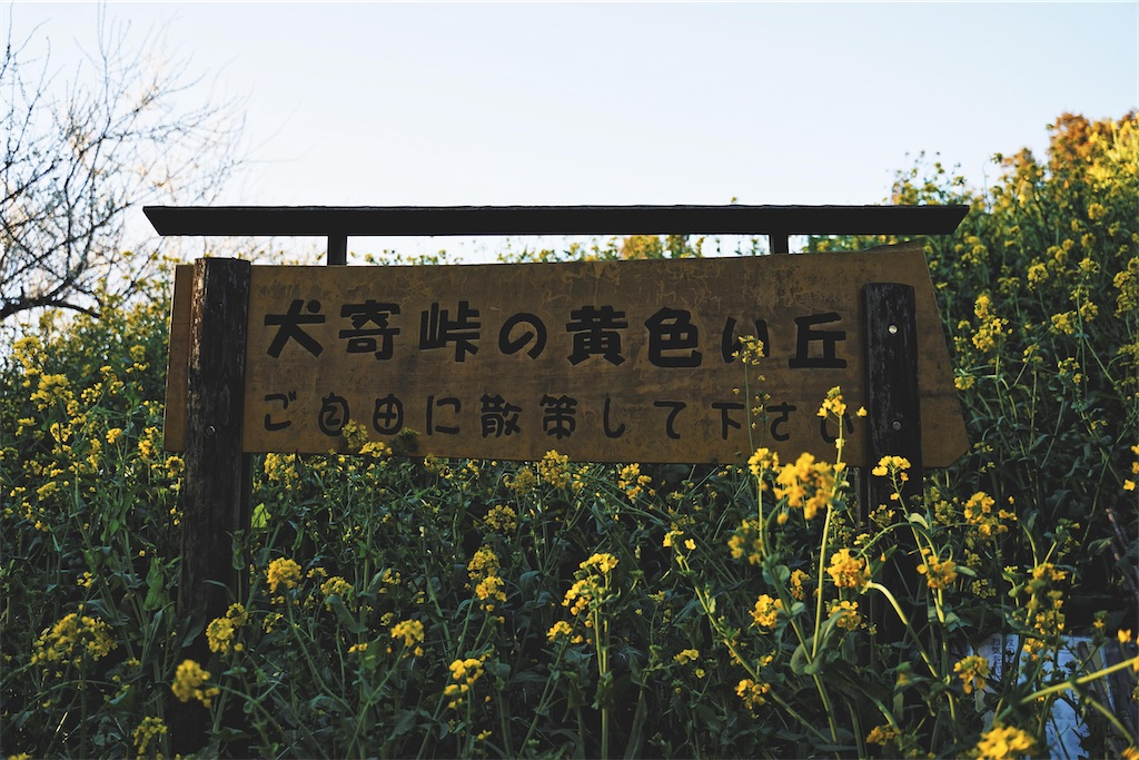 f:id:yuuki89:20200315201705j:image