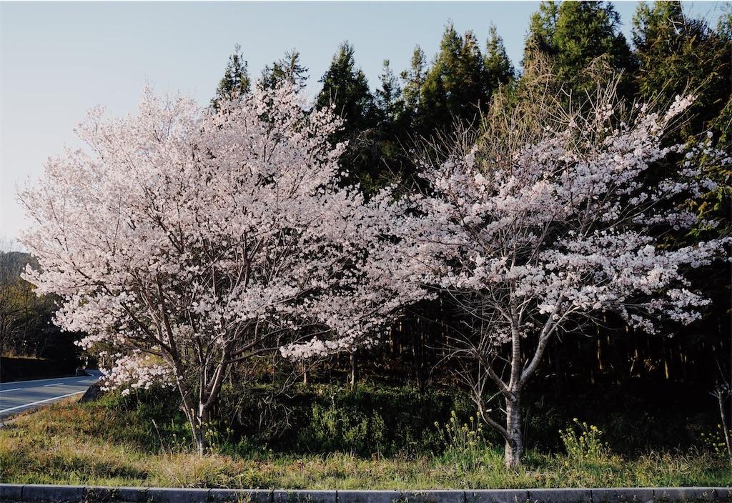 f:id:yuuki89:20200328165521j:image