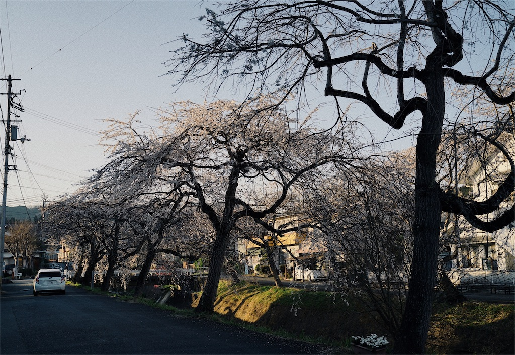 f:id:yuuki89:20200328170048j:image