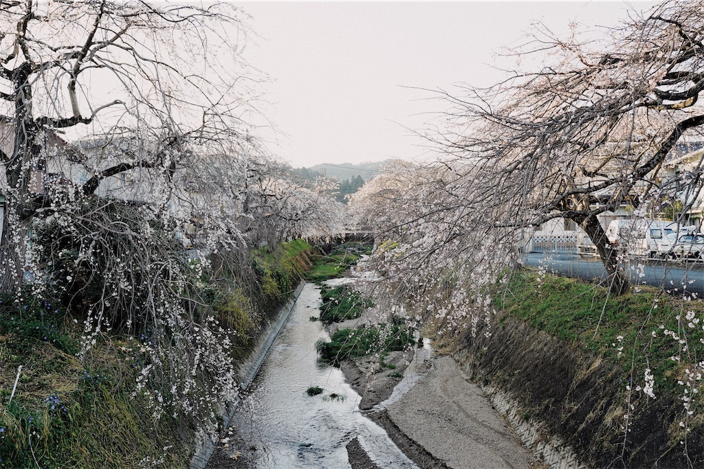 f:id:yuuki89:20200328170111j:image