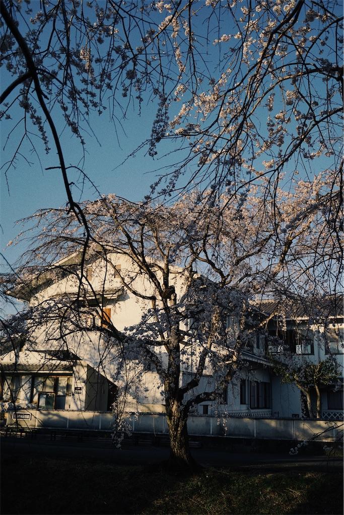 f:id:yuuki89:20200328170158j:image