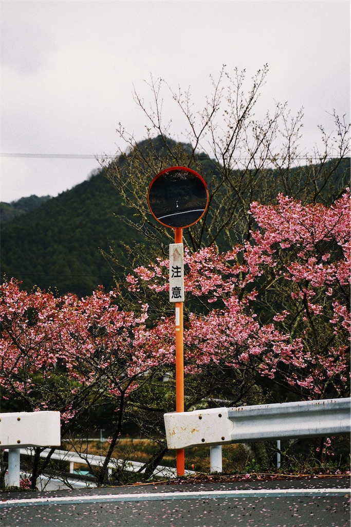 f:id:yuuki89:20200404203440j:image