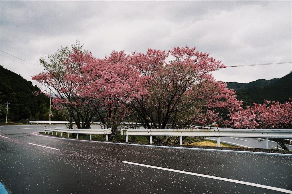 f:id:yuuki89:20200404203451j:image