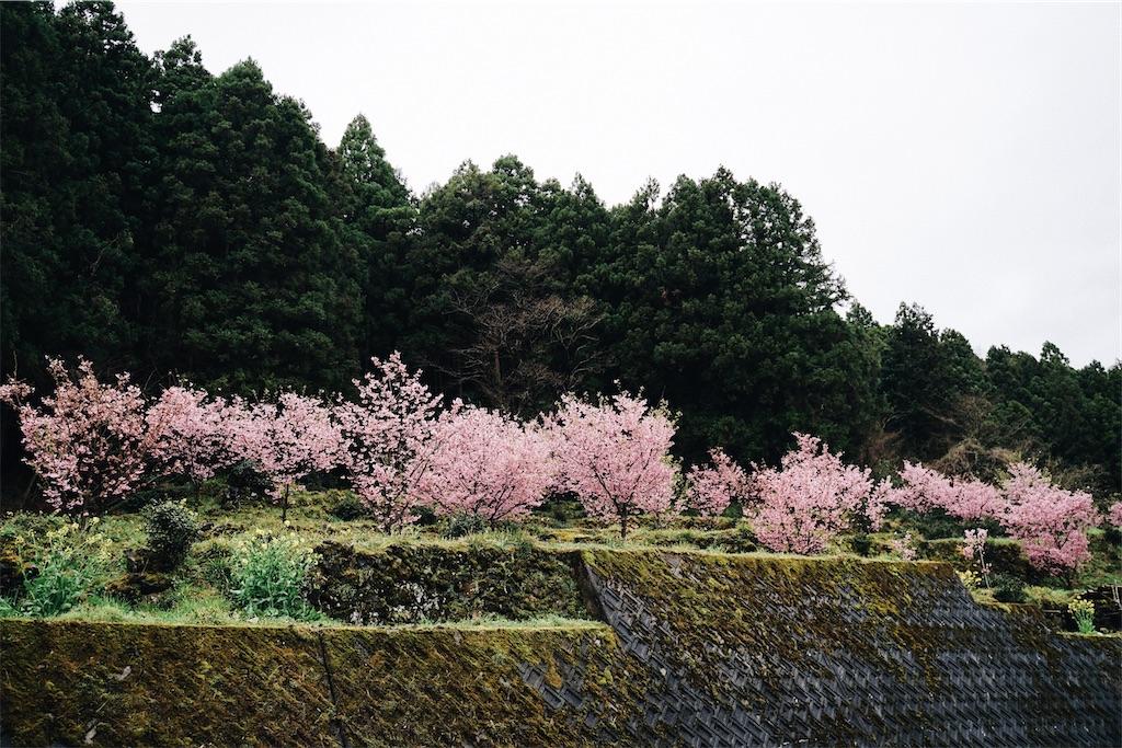f:id:yuuki89:20200404203456j:image