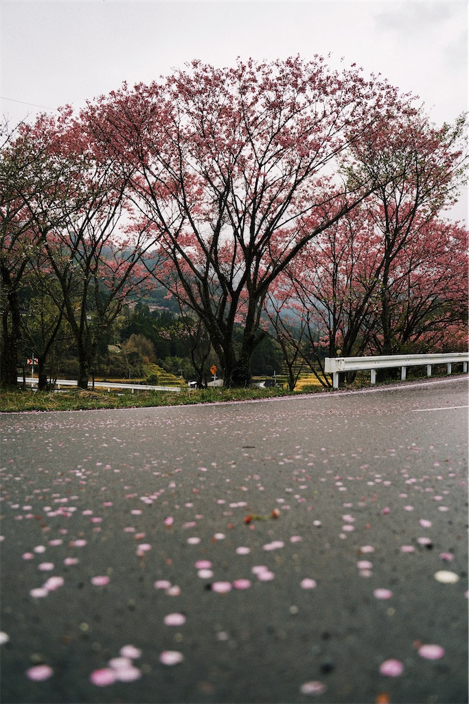 f:id:yuuki89:20200404203506j:image