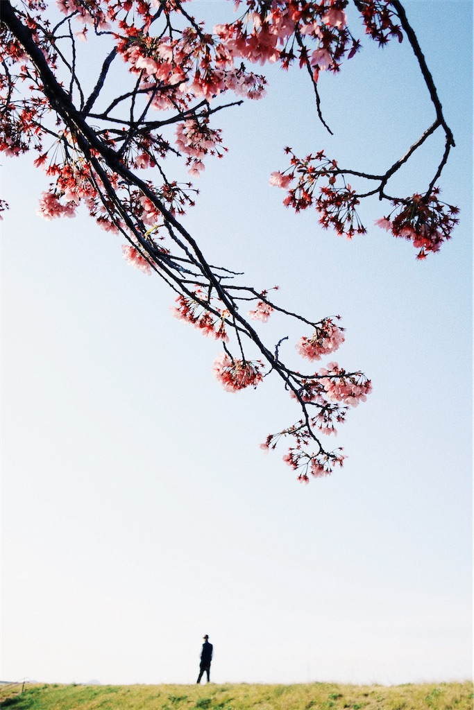 f:id:yuuki89:20200405212028j:image