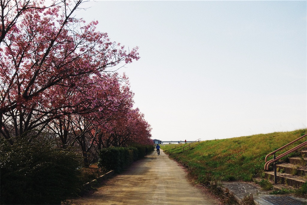 f:id:yuuki89:20200405212101j:image