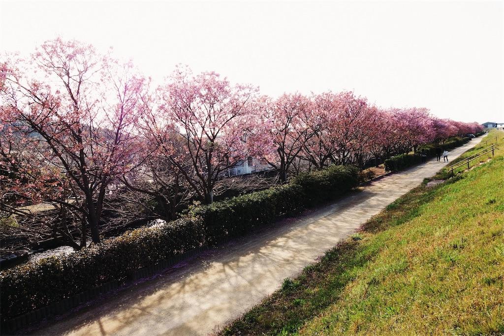 f:id:yuuki89:20200405212116j:image