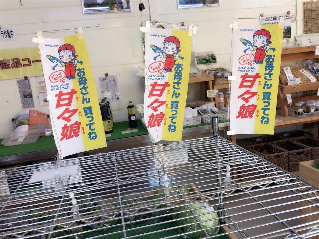 f:id:yuukichika:20170616032000j:image