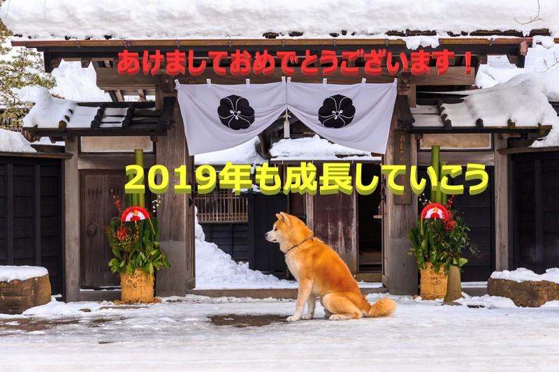 f:id:yuukirena1824:20181231010731j:plain