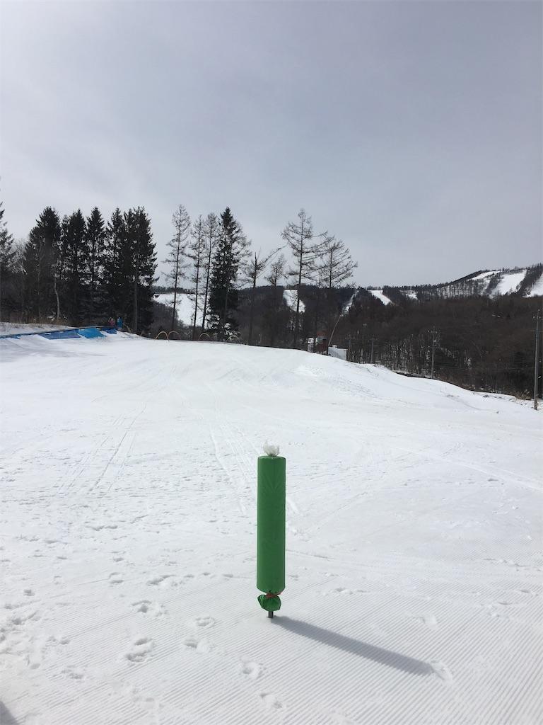 f:id:yuukirena1824:20190310144618j:image