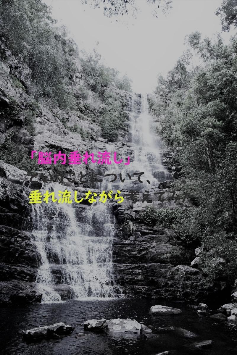f:id:yuukirena1824:20190319234553j:plain