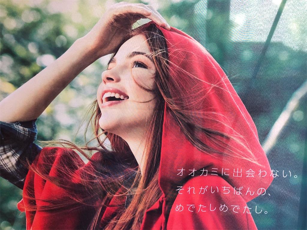 f:id:yuukirena1824:20190416053346j:image