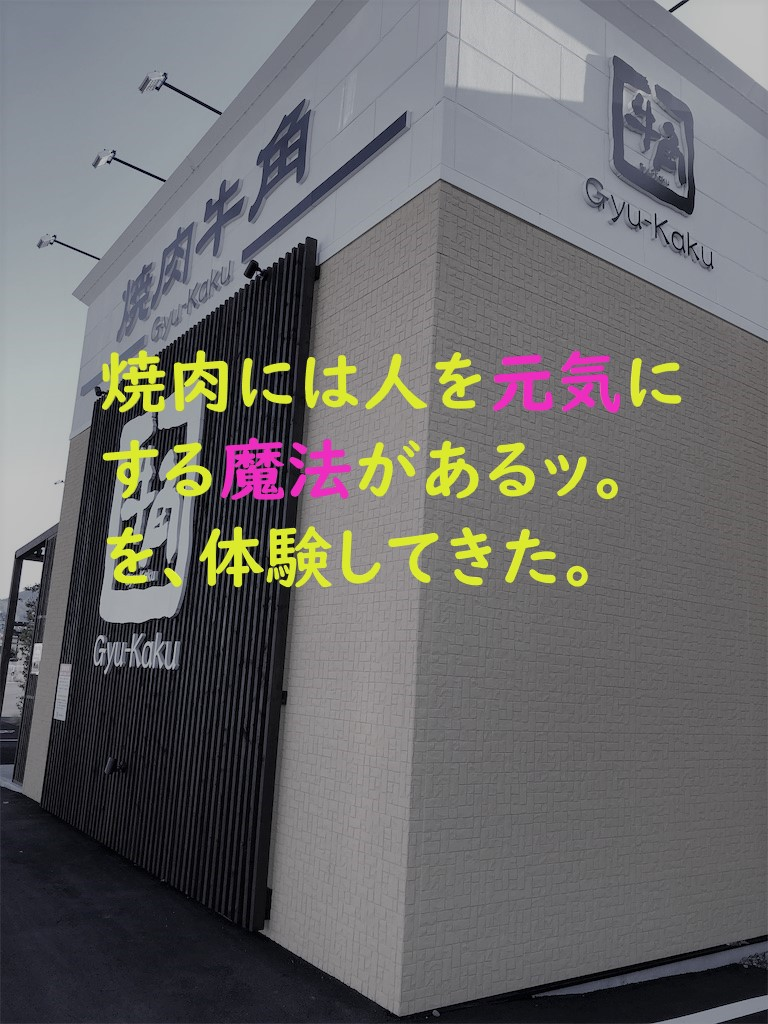 f:id:yuukirena1824:20190421224042j:plain