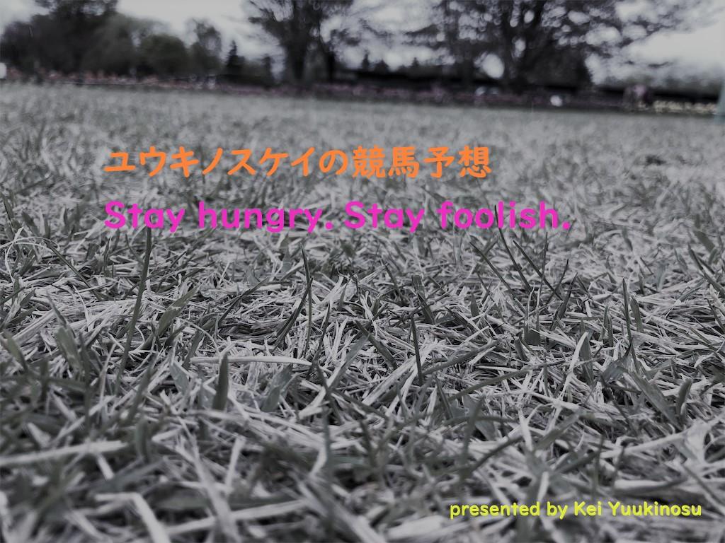 f:id:yuukirena1824:20190518224601j:plain