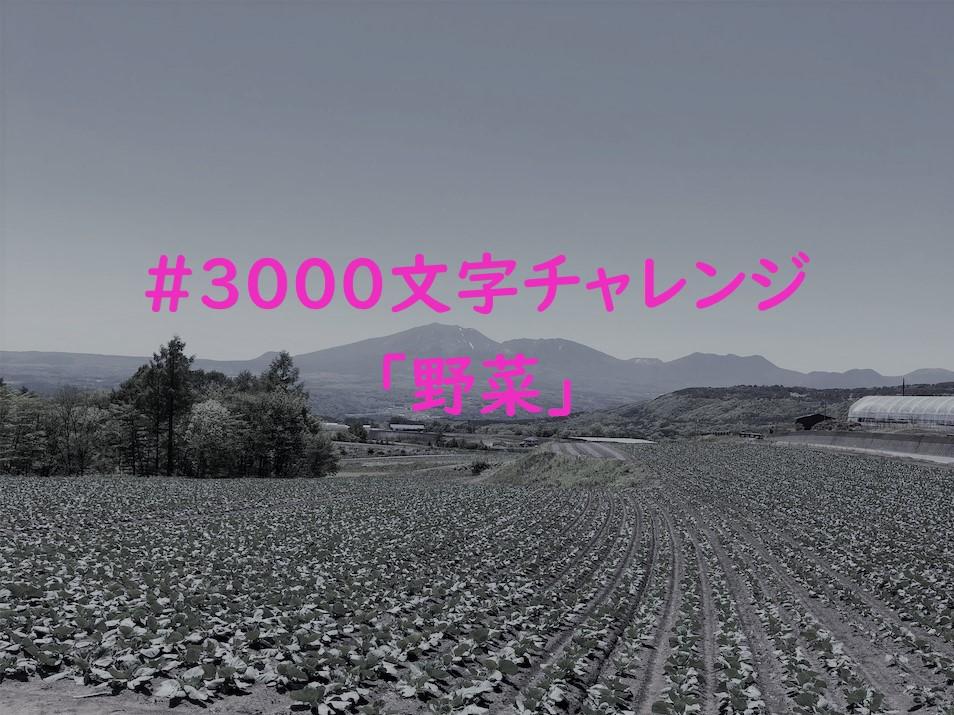 f:id:yuukirena1824:20190529230737j:plain