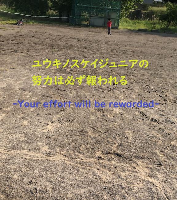 f:id:yuukirena1824:20190611002123p:plain