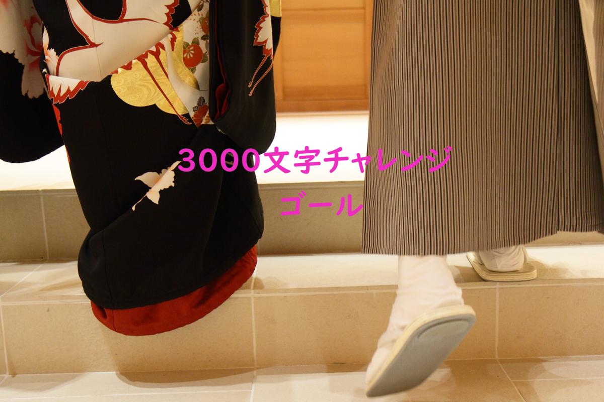 f:id:yuukirena1824:20191202002035p:plain