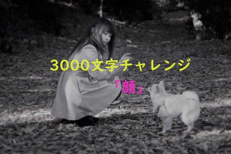f:id:yuukirena1824:20191228011708j:plain