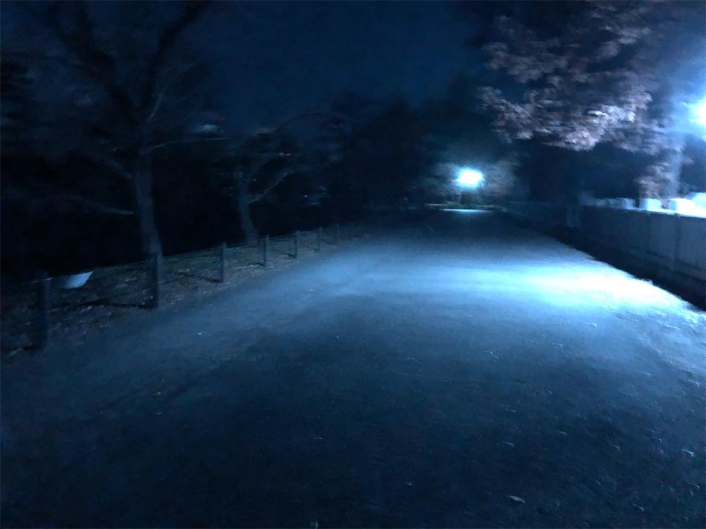 f:id:yuukirena1824:20201119222228j:image