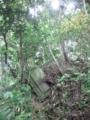 王城山 廃 石