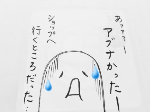 f:id:yuuko1220:20170527070826j:plain