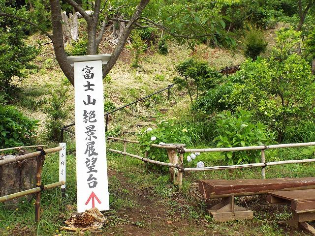 f:id:yuuko1220:20170625220732j:plain