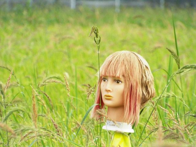 f:id:yuuko1220:20170817073154j:plain