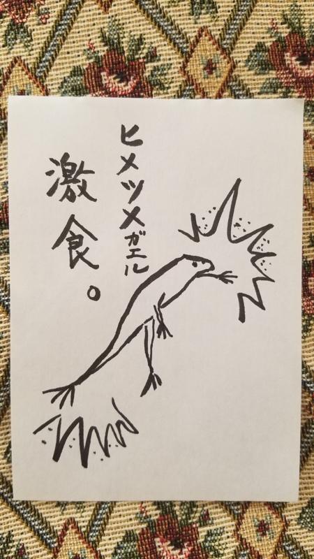 f:id:yuuko1220:20170915150046j:plain
