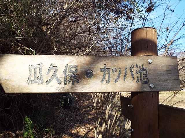 f:id:yuuko1220:20180115140242j:plain