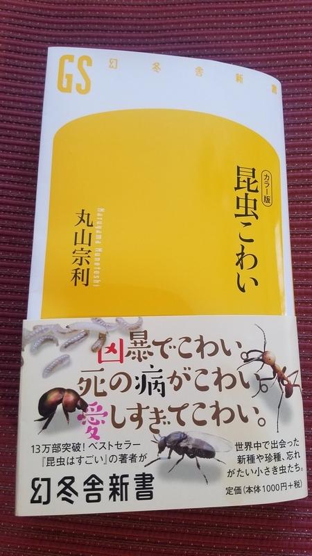f:id:yuuko1220:20180911160132j:plain
