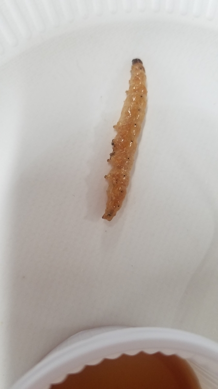 竹虫チップス 普通に美味