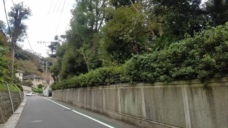 f:id:yuuko1220:20181107201256j:plain