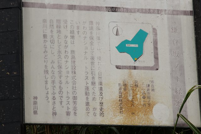 f:id:yuuko1220:20181108084543j:plain
