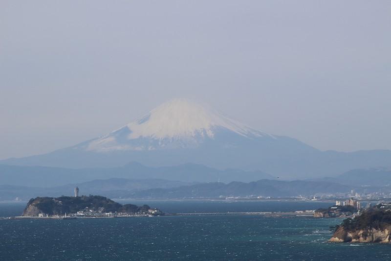 f:id:yuuko1220:20190208211436j:plain