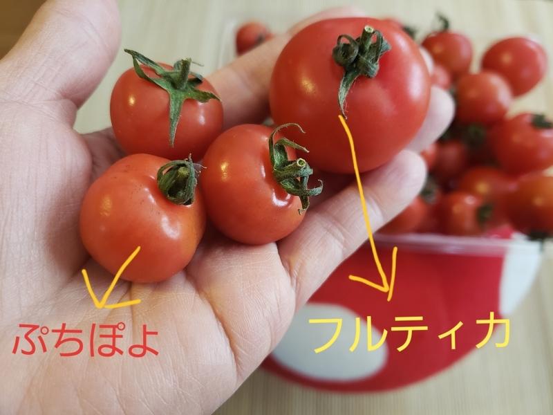 f:id:yuuko1220:20190417094306j:plain