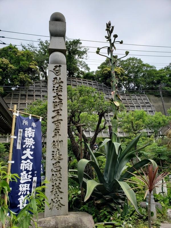 f:id:yuuko1220:20190523120136j:plain