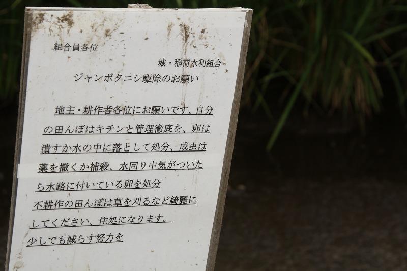 f:id:yuuko1220:20190902143430j:plain