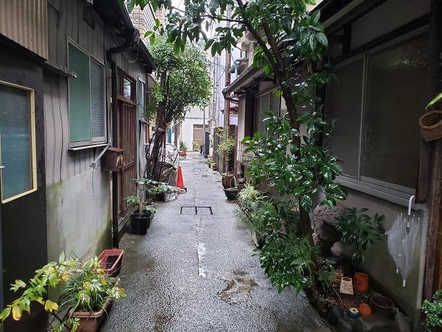 f:id:yuuko1220:20191130222156j:plain