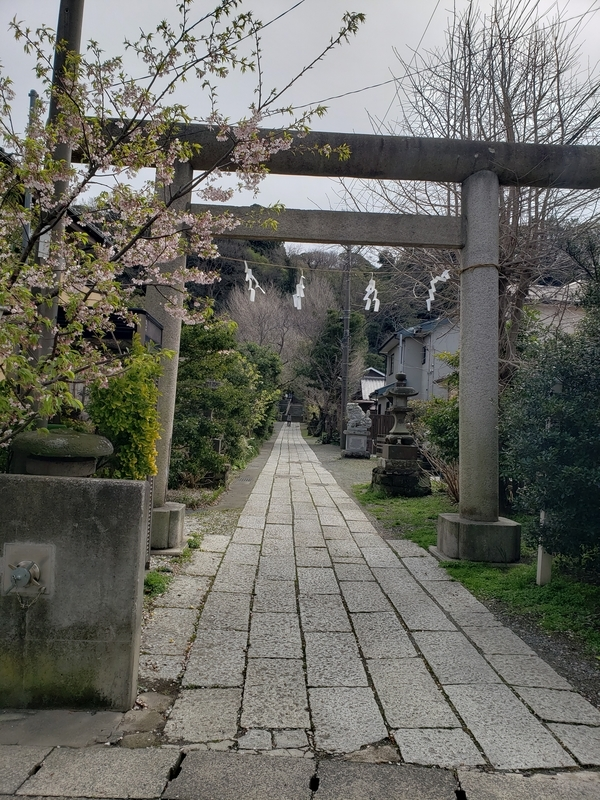 f:id:yuuko1220:20200309100532j:plain