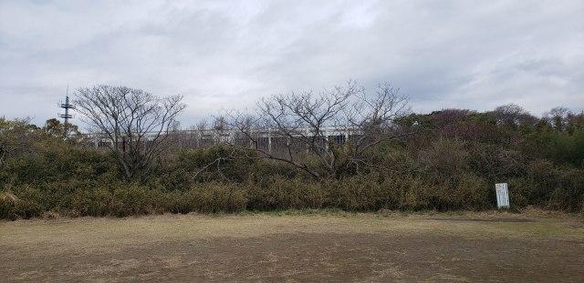 f:id:yuuko1220:20200324210735j:plain