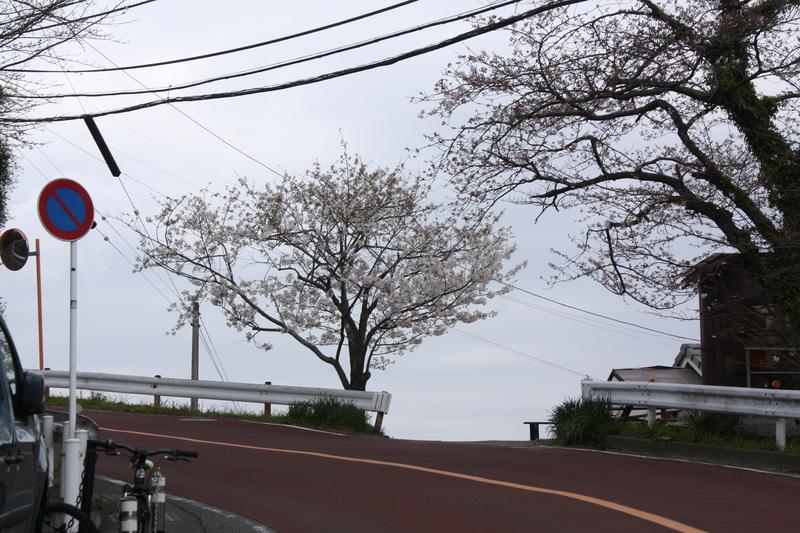 f:id:yuuko1220:20200324212957j:plain