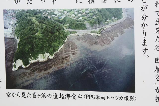 f:id:yuuko1220:20200404222745j:plain