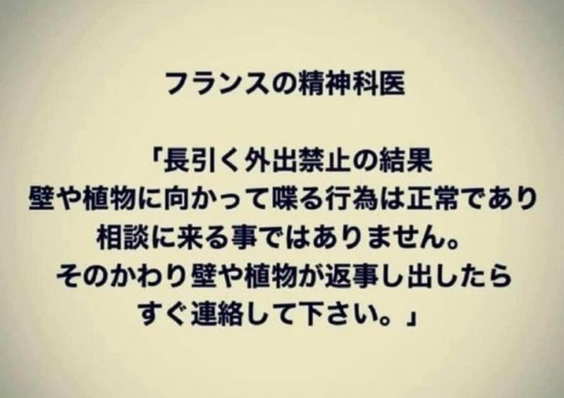 f:id:yuuko1220:20200504171702j:plain