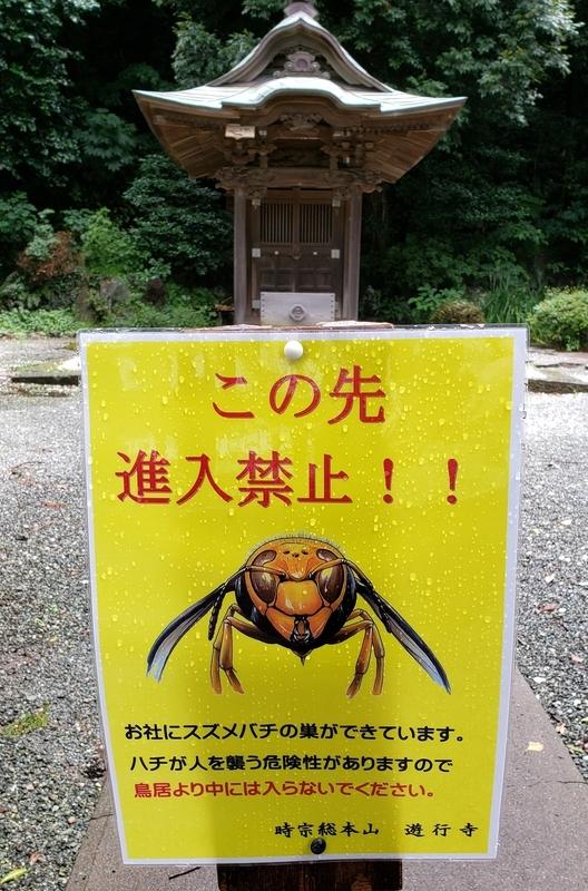 f:id:yuuko1220:20200709202625j:plain