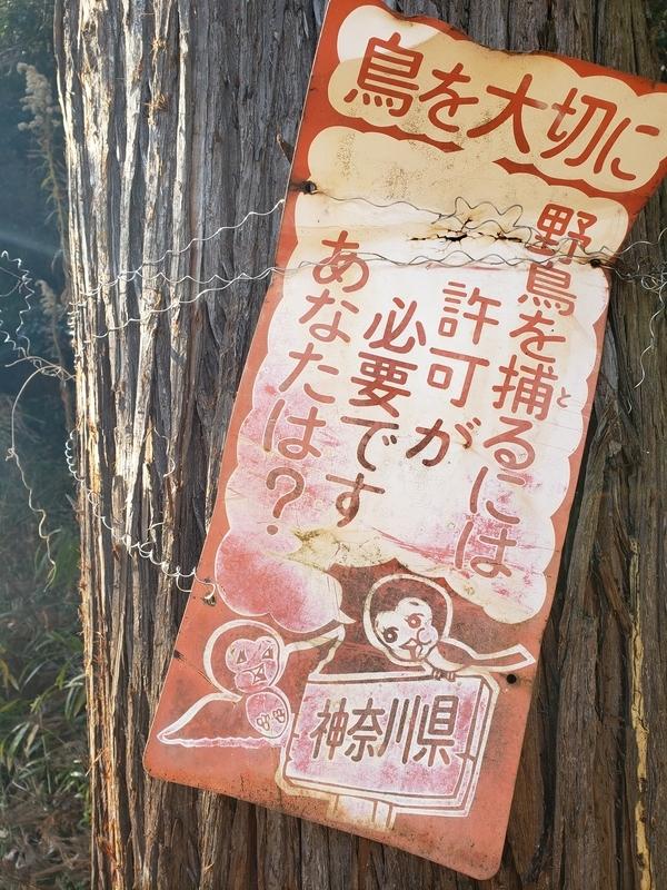 f:id:yuuko1220:20210124124843j:plain