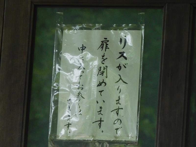 f:id:yuuko1220:20210603162400j:plain