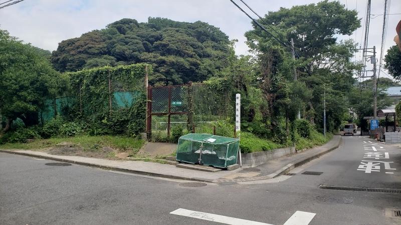 f:id:yuuko1220:20210715212926j:plain