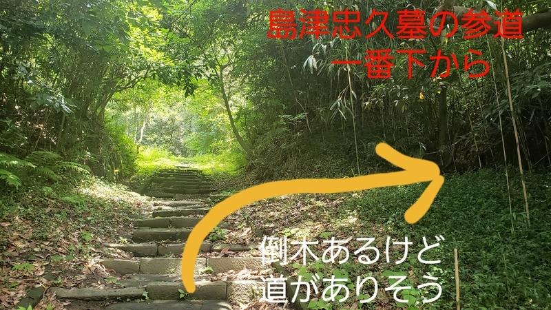 f:id:yuuko1220:20210715213708j:plain